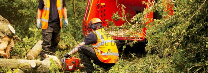 travaux-preparatoires-arrasement-broyage-elagage-evacuation-01